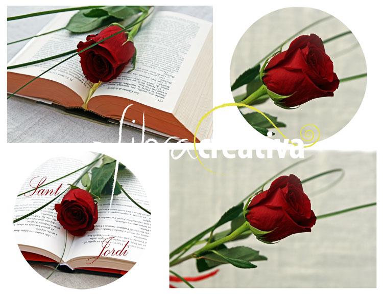Sant Jordi rosa i llibre