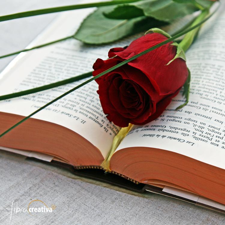 rosa i llibre de Sant Jordi