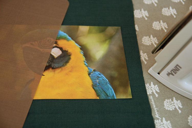 parrot-repasser