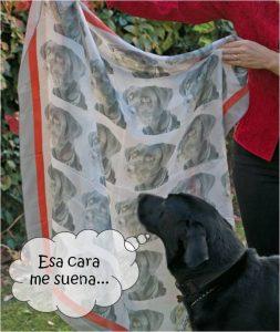 pañuelo de seda perro comic