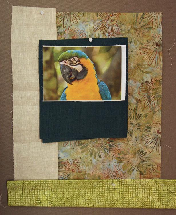 parrot-compo2